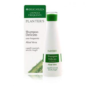 Shampoing Délicat Usage Fréquent Aloe Vera Cheveux