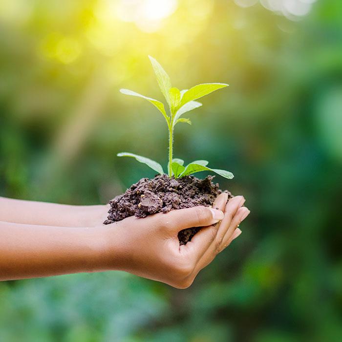 notre engagement eco-responsable