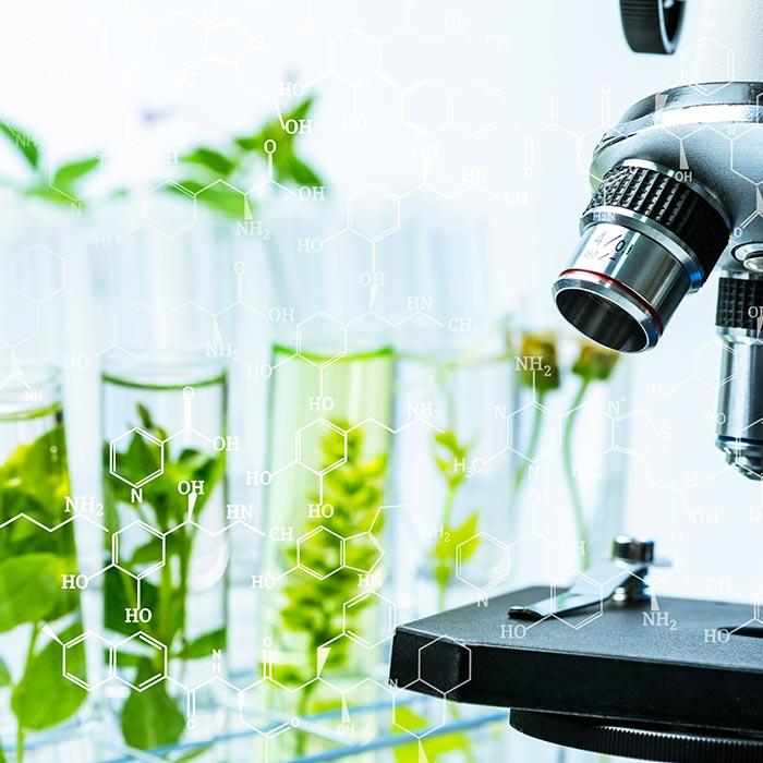 La recherche Planter's